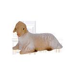 Ruco-Krippe: Lamm