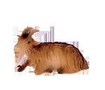 Ruco-Krippe: Ziege
