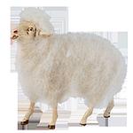 Ruco-Krippe: Wollschaf
