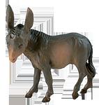 Ruco-Krippe: Esel