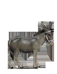 Orient-Krippe: Esel