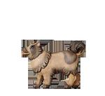 Orient-Krippe: Hund Spitz