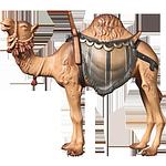 Fill-Krippe: Kamel