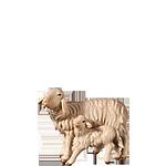 Fill-Krippe: Schafgruppe
