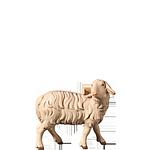 Fill-Krippe: Schaf