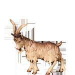 Fill-Krippe: Ziegenbock