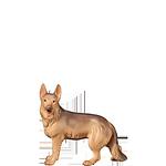 Fill-Krippe: Hirtenhund